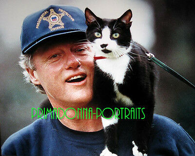 BILL CLINTON 8X10 Lab Photo 1990s w/ Cat Socks, Candid Presidential Portrait #2