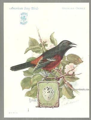 Trade Card Singer Sewing Machine American Song Birds Series Orchard Oriole