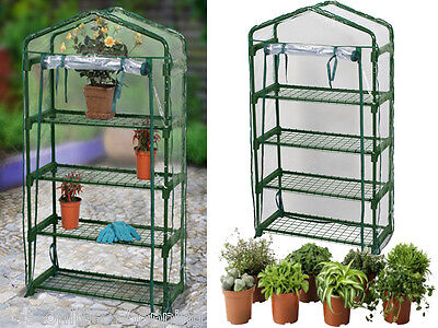 Large 4 Tier Cold Frame Mini Greenhouse Grow House Pvc Cover Garden Outdoor New