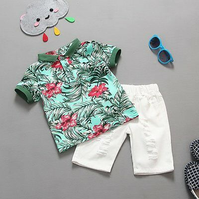 2pcs Toddler Kids Baby Boys Floral T-shirt Tops+Beach Shorts Outfits Clothes Set