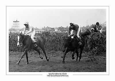 Grand National Specify 1981 Horse Racing A4 Photo Aintree J Wood