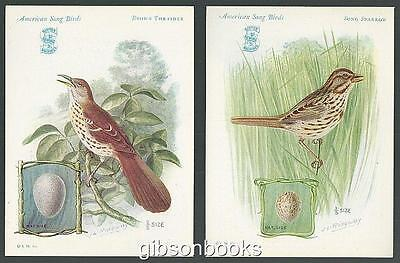 Lot Two Victorian Trade Cards Singer Sewing Machine Song Birds Sparrow/Thrasher