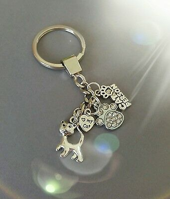 paw print, cat key ring