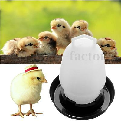 1/2/5x 250ML Automatic Chicken Quail And Poultry Bird Pheasant Feed Water Feeder