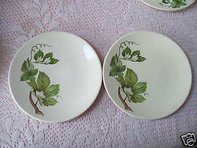 """Edwin Knowles GRAPEVINE Set of Two 6 1/4"""" Bread & Butter Plates Good Condition."""