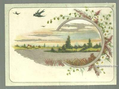 Victorian Trade Card For G. M. Olmsted Soap Makers with Flying Birds