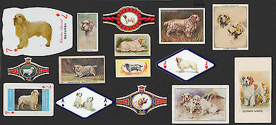 15 Clumber Spaniel Original Collectable Dog Cigarette Breed/ Trade Cards Bands
