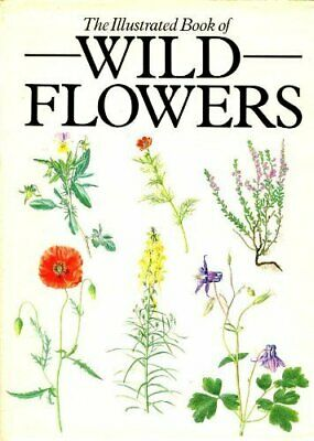 Illustrated Book of Wild Flowers by Hisek, Kvetoslav Hardback Book The Cheap