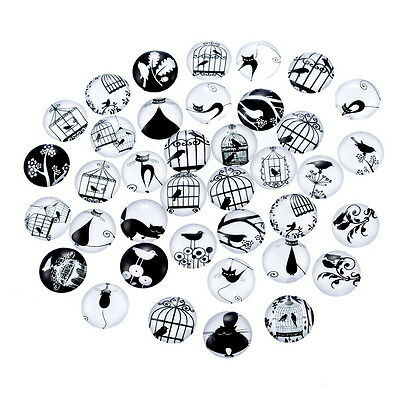 10 Cat Bird Cage Random Mixed Round Glass Cabochons Jewellery Making 12mm (003)