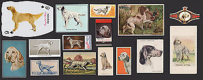 15 English Setter Vintage Collectable Dog Cigarette Breed Trade Cards And Bands