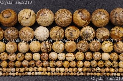 Natural Picture Jasper Gemstone Faceted Round Beads 4mm 6mm 8mm 10mm 12mm 16""