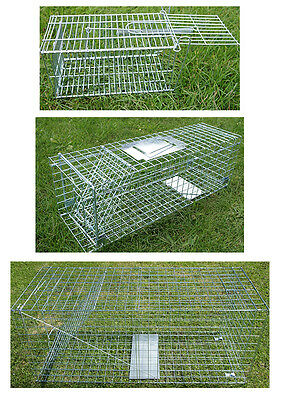 "Mouse,Rat,Rabbit,Fox, traps Available!! Choice of 4 Traps, 51"" & 61"" humane trap"