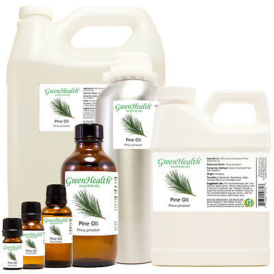 Pine Essential Oil 100% Pure Free Shipping All Sizes