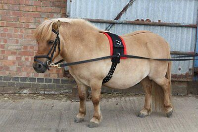 Small Pony / Pony / Cob / Horse Lungeing Roller Set -  superb training aid  NEW