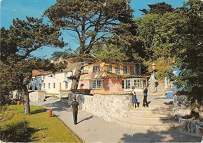 Herm Channel Islands Postcard Mermaid Cottages Surrounded by Shops 017