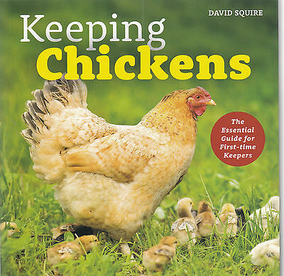 Keeping Chickens Essential Guide for First-time Keepers by Squire - New Book