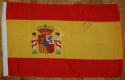 Fernando Alonso Signed 11X17 inches Spain Flag