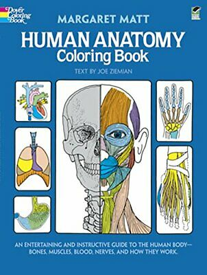 Human Anatomy Colouring Book by Ziemian, Joe Book The Cheap Fast Free Post