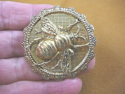 (b-bee-160) large Bee bumble bees insect on round scrolled brass pin pendant