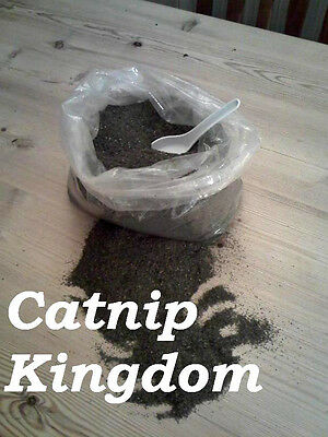CATNIP - Premium Canadian -You won't buy stronger !!! In cat proof containers !