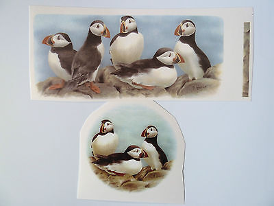 Ceramic Decal Puffin Puffins Mug Size or centre 70mm