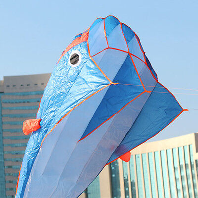 Outdoor Sports Easy to Fly 3D Kites Huge Parafoil Giant Dolphin Blue Power Kite