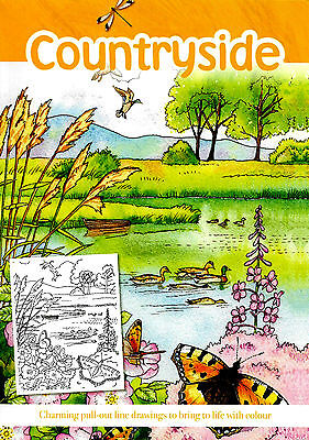 Countryside Adult Colouring Book (New Landscapes Mindfulness Anti-Stress P/B)