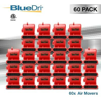 60 Pack BlueDri ONE-29 Air Mover Carpet Dryer Floor Blower Fan for Water Damage