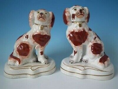 Pair Staffordshire spaniels on gilt decorated bases