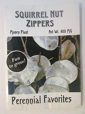 Squirrel Nut Zippers Perennial Favorites 1998 Promo Seed Pack Katherine Whalen
