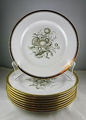 9 Spode Bone China Chatham Gold Salad Plates - Y5280 - Excellent