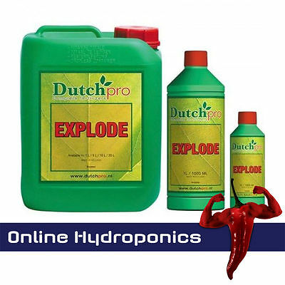 Dutch Pro Explode 250ml,1 litre and 5 litre