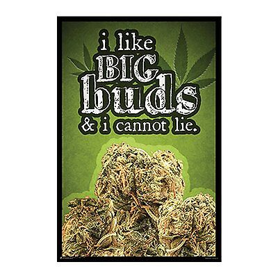 BIG BUDS - WEED POSTER - 24x36 MARIJUANA SMOKING POT 10950