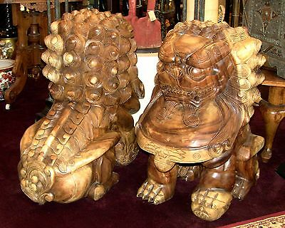 Huge Hand Carved Solid Teak Foo Dog Lions, Very Heavy!