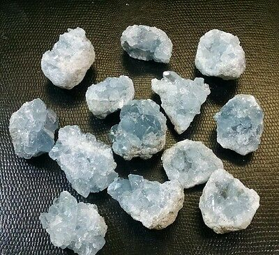 "XSmall AA grade Natural Celestite Mineral Cluster from Madagascar .75-1"" ech 1pc"