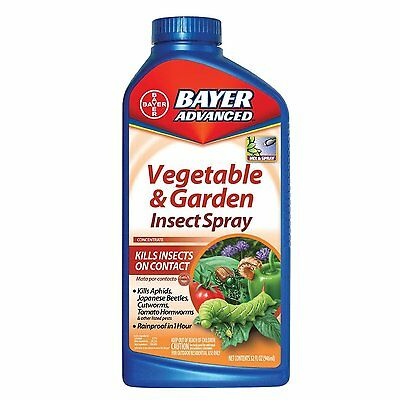 Bayer Advanced 701521 Vegetable and Garden Insect Spray, 32-Oz (10190000)