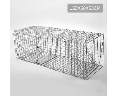 NEW 155x50x53CM Large Collapsible Humane Animal Trap Cage Spring Loaded Door