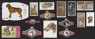 15 Irish Wolfhound Vintage Dog Collectable Cigarette Trade Cards And Bands