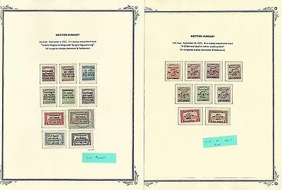 Western Hungary 1921 on 13 Scott Specialty Pages, Rare Westungarn Collection