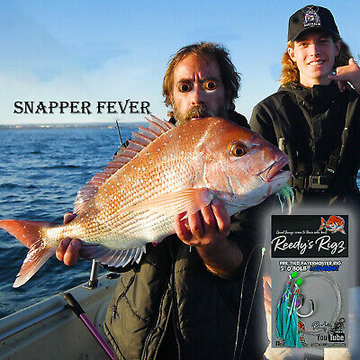 10 Snapper Hook rigs 6/0 Fishing Rig Tie Paternoster Dropper Reef Season Reds