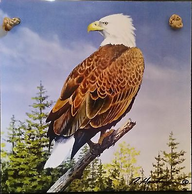 "Wood Sign-Plaque-BALD EAGLE-7 3/4"" by 7 3/4"""