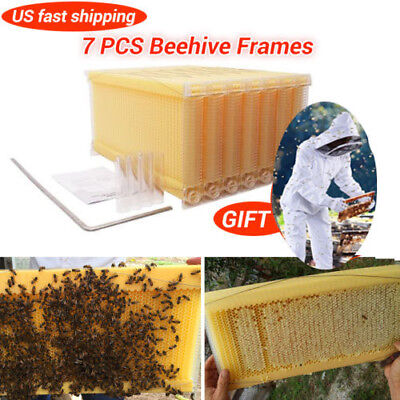 7Pcs the Flow Beehive frames Kit Raw Honey Bee Hive Frames Beekeeping Hives