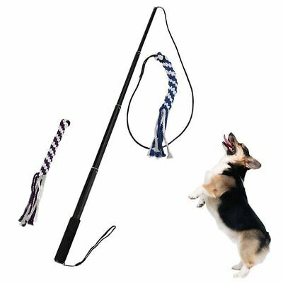 Flexible Tease Stick Dog Cat Training Stick   black  L