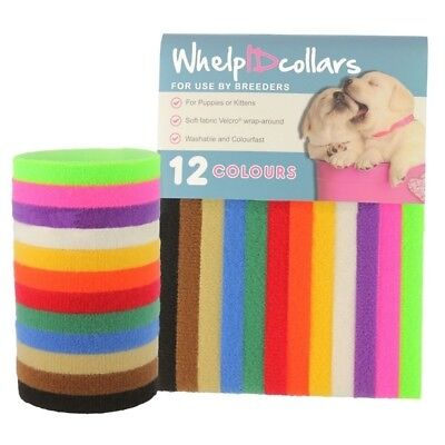 Pet necklace Necklet Dog Puppies ID 12 Color Magic Tape   10x350mm
