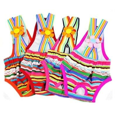 Rainbow Design Dog Suspender Physiological Pants  6#