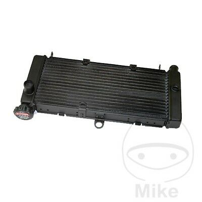 For Honda CB 600 F Hornet 2006 Radiator
