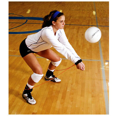 Authorized Retailer of Volleyball Pass Rite
