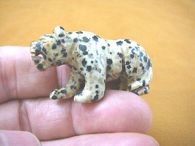 (Y-PANT-567) Black white spotted PANTHER stone LEOPARD wild cat GEMSTONE carving