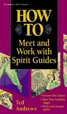 How to Meet and Work with Spirit Guides (Llewellyn'... by Andrews, Ted Paperback