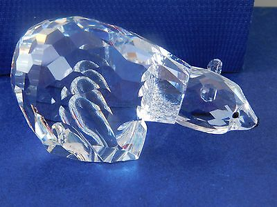 "Swarovski  1986 Polar Bear.. Large 3.1/2"". Bnib.coa "" Kingdom Of Ice & Snow."""
